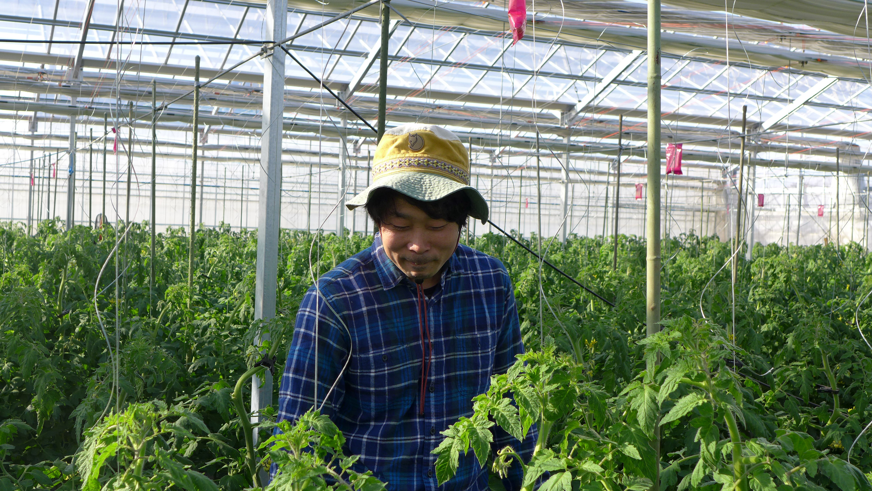 まごころふぁーむ【横浜市泉区の野菜直売所】