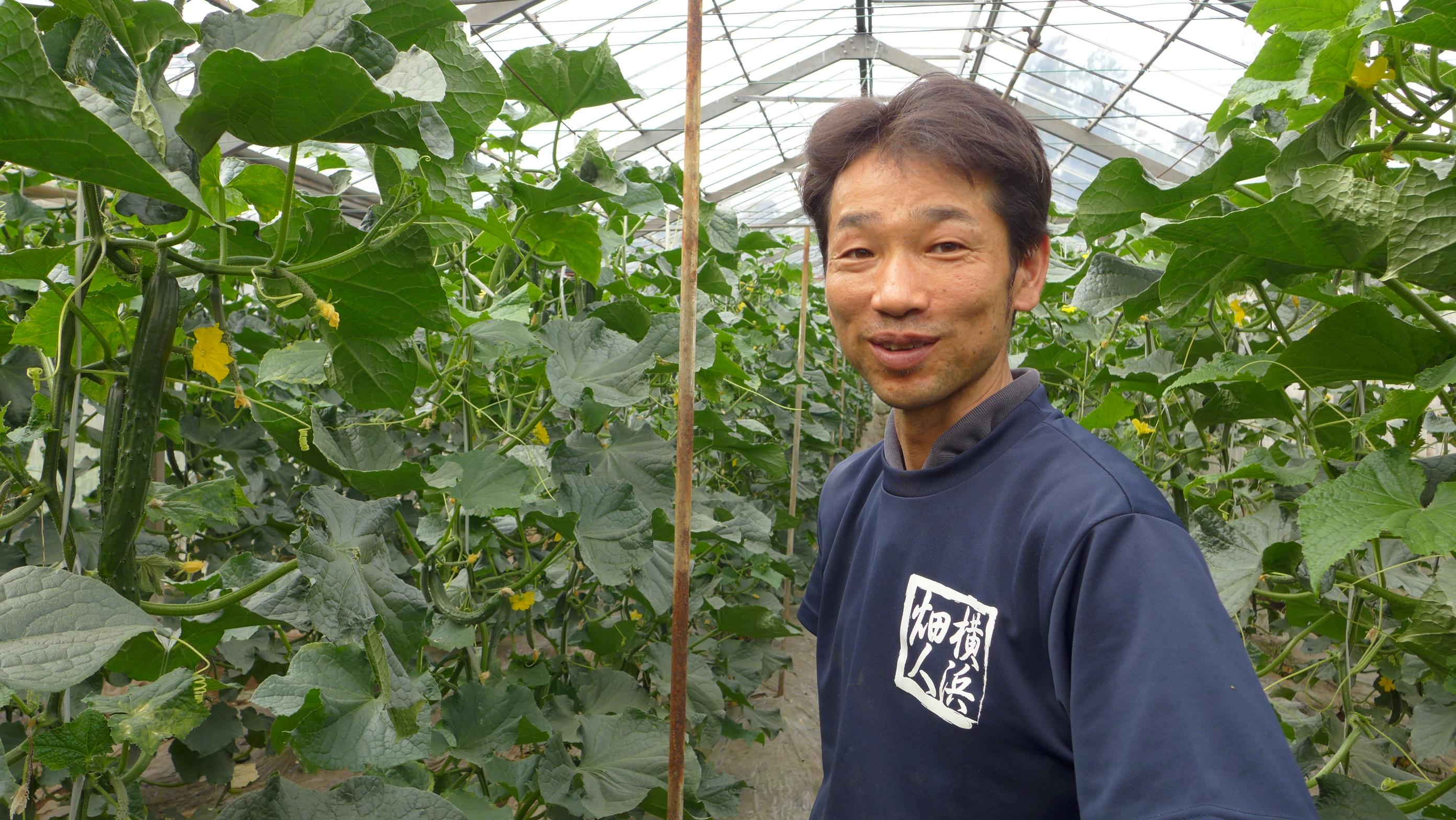 「有機農法にこだわって、味の濃い野菜を育てています」 オーガニックサラダ館– 横山 直信さん
